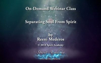 Separating Soul From Spirit
