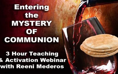 Entering the Mystery of Communion, Revised
